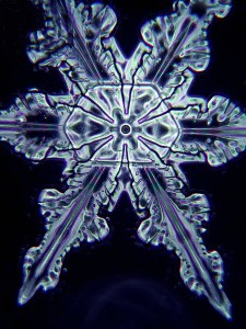 Snowflake_crystal